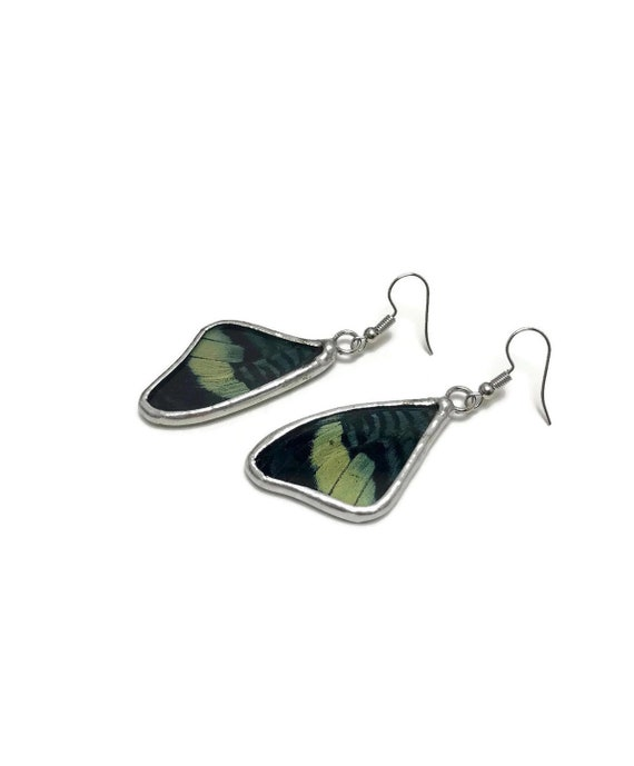 Butterfly earrings, Unique Gifts for her, jewelry For her, real butterfly wing, Statement jewelry, Butterfly earrings, butterfly taxidermy