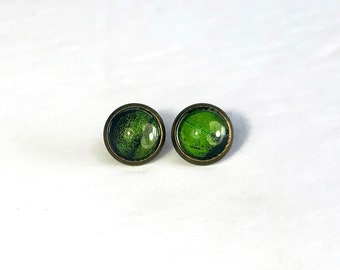 Butterfly jewelry, Green butterfly wing stud earrings, unique gifts for mom, bridal earrings, insect wing taxidermy jewelry