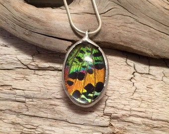 Jewelry, butterfly pendant, handmade butterfly jewelry, real butterfly, Real moth jewelry, real moth wing Necklace, sunset moth Pendant