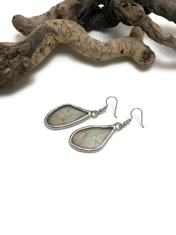 Real Butterfly jewelry, real butterfly wing, butterfly earrings, Glass earring, insect jewelry, glass jewelry, insect earrings, butterfly