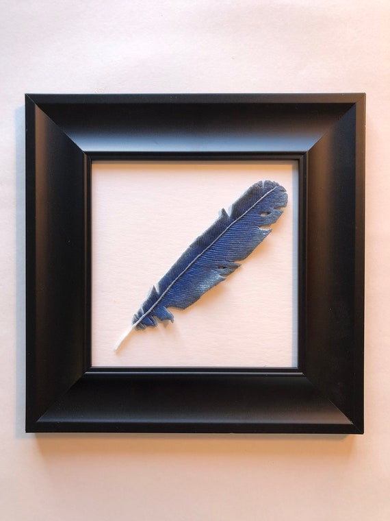 Fused Glass blue bird feather wall art, Unique gifts for mom, feather home decor, glass sculpture