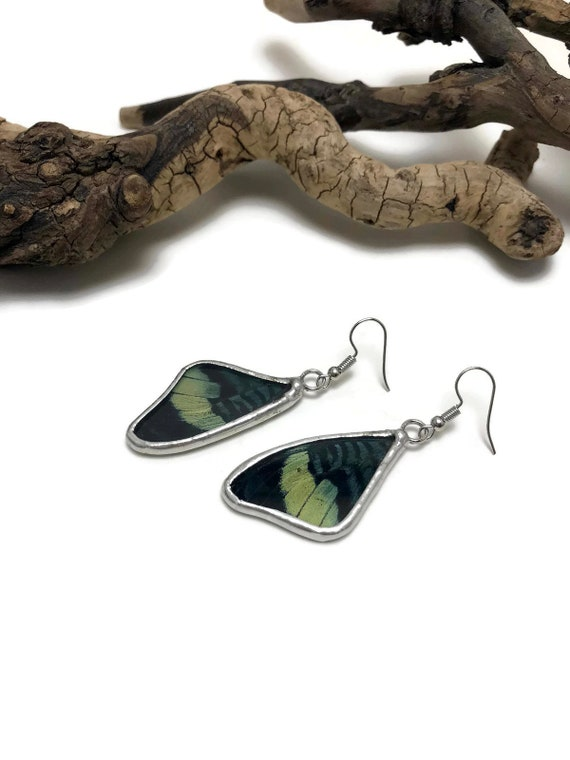 Real butterfly Jewelry, statement jewelry, butterfly earrings, unique gifts for her, unique jewelry, insect jewelry, butterfly taxidermy