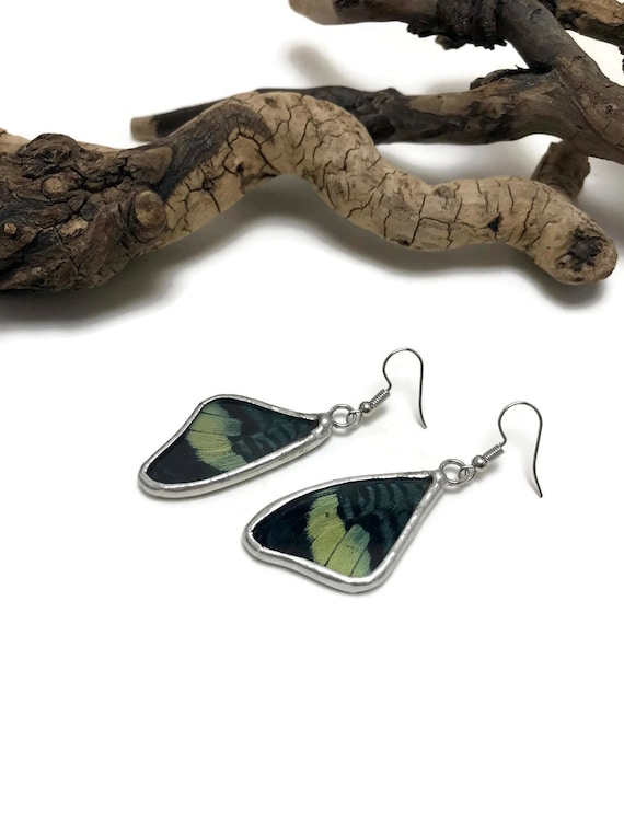 Real butterfly Jewelry, Butterfly earrings, glass earrings, insect jewelry, real butterfly Wing, insect earrings, glass jewelry, butterfly