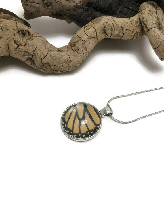 Real butterfly Jewelry, real butterfly necklace, real insect jewelry, butterfly pendant, Real Butterfly Wing, monarch Butterfly Pendant