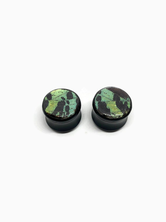 ear plugs and tunnels, butterfly ear plugs, pair of plugs, butterfly ear tunnels, Unique gifts, real butterfly wing, butterfly taxidermy