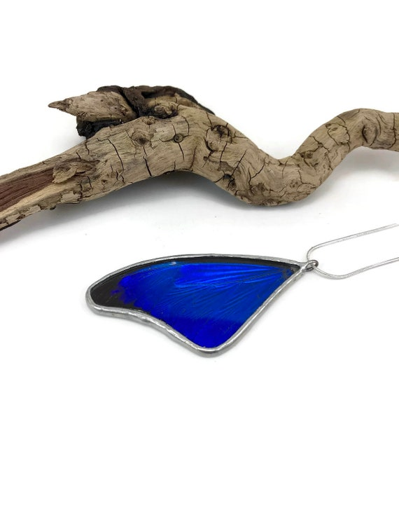 Butterfly necklace, insect pendant, real butterfly wing, insect jewelry, Real butterfly jewelry, Real Butterfly Jewelry, Blue Morpho Pendant