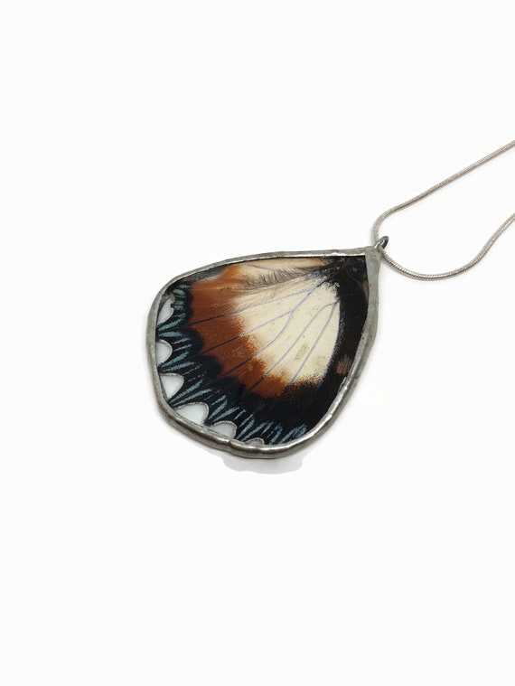 Real Butterfly wing necklace, unique gifts for her, insect pendant, taxidermy butterfly wing jewelry