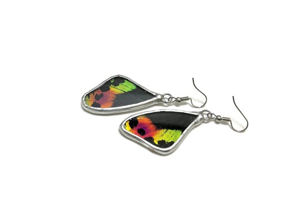 butterfly jewelry, statement earrings, jewelry for her, real butterfly wing, Butterfly earrings, insect jewelry, Unique gifts for her, gifts