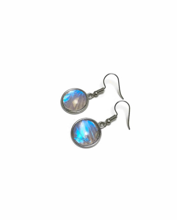Blue Butterfly Wing earrings, gifts for mom, butterfly taxidermy, Morpho Butterfly, butterfly lover gifts
