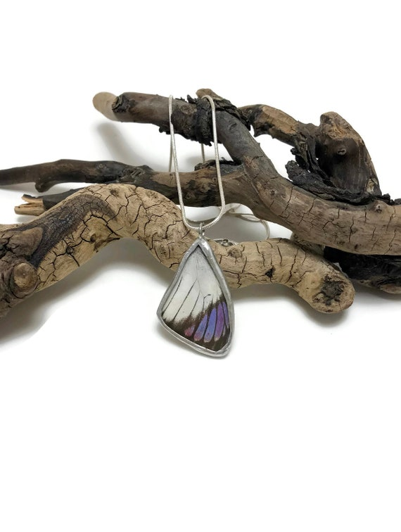 Real butterfly pendant, real butterfly jewelry, insect jewelry, real butterfly necklace, Butterfly Wing Necklace, butterfly Pendant