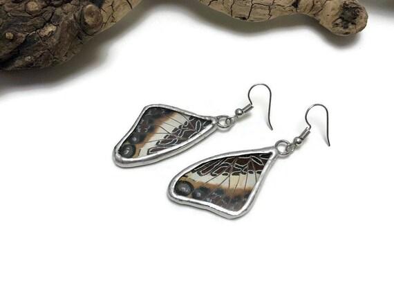 butterfly Jewelry, statement earrings, Butterfly earrings, unique gifts for her, glass earrings, real butterfly Wing, insect earrings, gifts