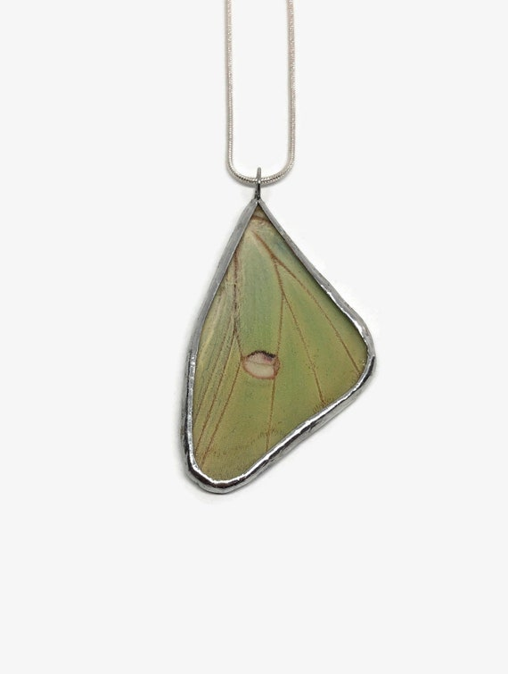 butterfly jewelry, Unique jewelry, real butterfly wing, gifts for mom, real butterfly pendant, Real Butterfly Necklace, Real insect jewelry