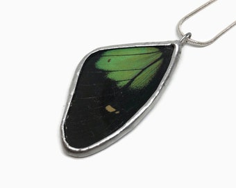 Green and black butterfly pendant, Butterfly jewelry, unique gifts for her, butterfly wing, Insect necklace, butterfly taxidermy jewelry