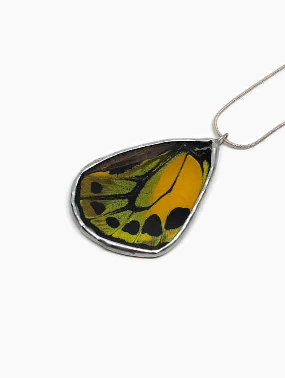 Real Butterfly jewelry, statement jewelry, real insect Necklace, real butterfly wing, unique gifts for her, real butterfly wing, gifts