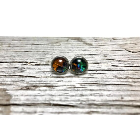 Real butterfly wing, butterfly studs, real butterfly studs, stud earrings, glass earrings, real butterfly earrings, insect earrings, insect