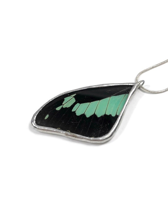 Beautiful butterfly wing pendant, Unique gifts for her, Real butterfly wing, insect pendant, butterfly gifts, insect taxidermy, gifts