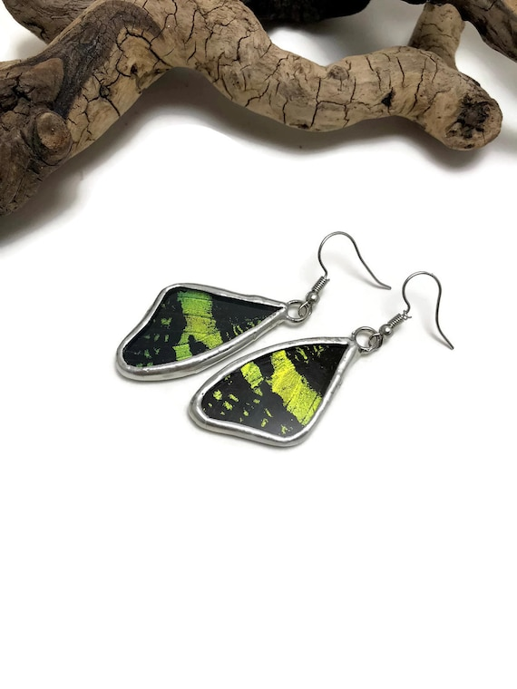 Real butterfly Jewelry, real butterfly wing, Butterfly earrings, glass earrings, insect jewelry, real butterfly wing, Insect Earrings, glass