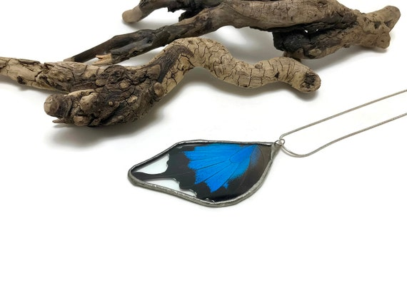 Real butterfly necklace, Real butterfly jewelry, real butterfly wing, butterfly pendant, glass necklace, insect pendant, insect necklace
