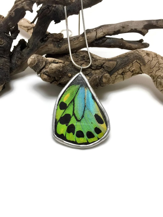 Real Butterfly jewelry, real butterfly wing, gifts for mom, real butterfly Necklace, Insect necklace, Insect pendant, butterfly taxidermy
