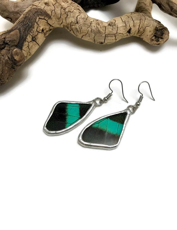 Real butterfly Jewelry, real butterfly wing, Butterfly earrings, glass earrings, insect jewelry, insect earrings, Unique gifts, insect art
