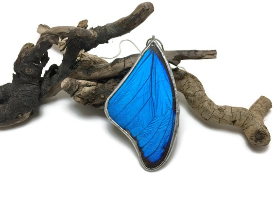 Real insect jewelry, butterfly Necklace, butterfly pendant, glass necklace, Blue Morpho Pendant, real butterfly wing, insect necklace