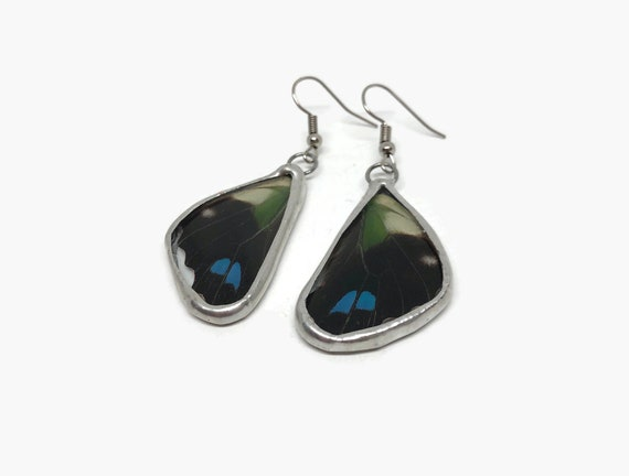 Butterfly dangle earrings, unique gifts for her, butterfly taxidermy, real butterfly jewelry