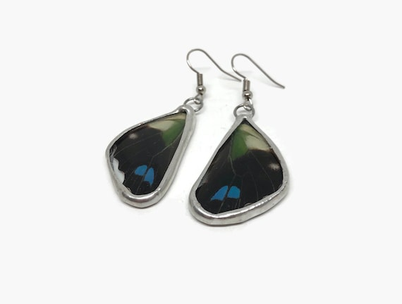 Butterfly earrings, Unique jewelry, butterfly jewelry, real butterfly wing, statement jewelry, unique gifts for her, butterfly taxidermy