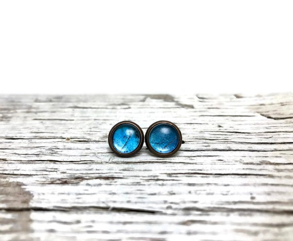 Blue Butterfly Wing stud earrings, Unique jewelry, gifts for her, Blue morpho butterfly, real butterfly wing, butterfly taxidermy, gifts