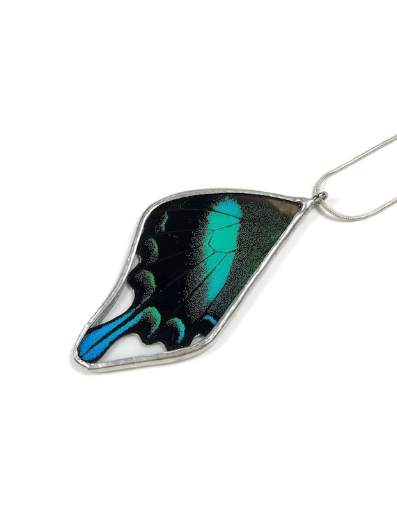 Real Butterfly jewelry, real butterfly pendant, insect jewelry, glass jewelry, real butterfly necklace, Real Butterfly Wing, insect Pendant