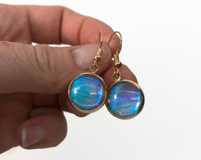 Featured listing image: Blue Morpho earrings, butterfly jewelry, gifts for her, real butterfly wing, butterfly taxidermy, insect earrings