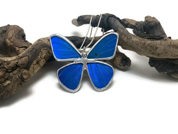 butterfly jewelry, Unique jewelry, Real Butterfly Wing, gifts for mom, butterfly necklace, butterfly pendant, Insect jewelry, insect pendant