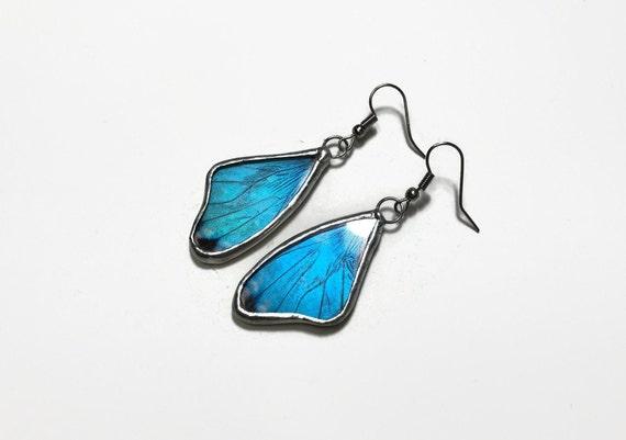 Blue morpho earrings, Butterfly jewelry, best friend gifts, real butterfly wing, insect jewelry, butterfly taxidermy jewelry