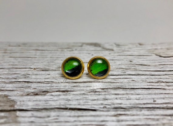 Butterfly wing stud earrings, unique gifts for mom, butterfly taxidermy, butterfly lover gifts