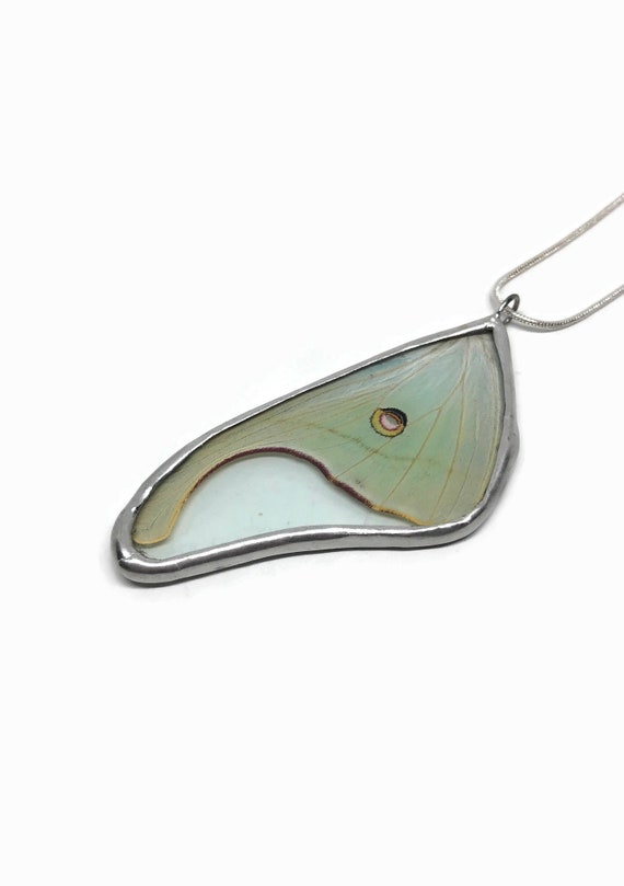 Real Butterfly Wing Necklace Luna moth