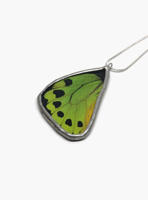 Real butterfly pendant , Unique jewelry, unique gifts for her, insect jewelry, statement jewelry, real butterfly wing, Butterfly taxidermy