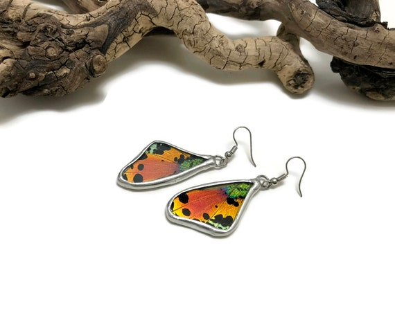 Unique gifts, Real butterfly wing, real butterfly Jewelry, Real Butterfly earrings, insect jewelry, insect earrings, butterfly earrings