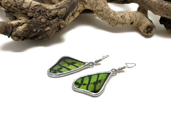 Real Butterfly jewelry, real butterfly wing, butterfly earrings, insect jewelry, glass jewelry, insect earrings, glass earrings, butterfly