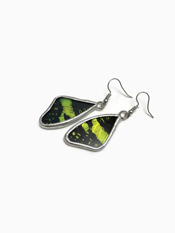Black and green real butterfly wing dangle earrings, jewelry for her, butterfly taxidermy
