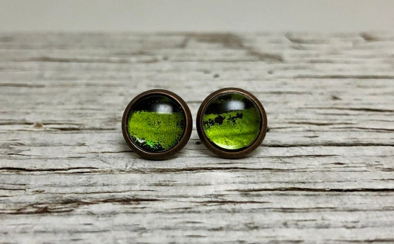 Recycled green butterfly stud earrings, unique gifts for her, Butterfly lover gifts, butterfly taxidermy