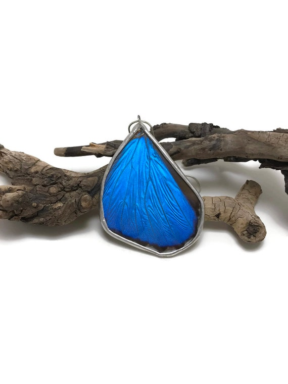 Butterfly necklace, Unique jewelry, real Butterfly wing, minimalist jewelry, butterfly jewelry, Real butterfly pendant, butterfly taxidermy