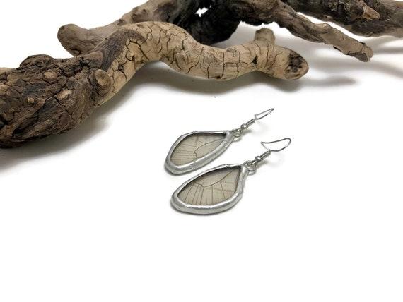 Real butterfly Jewelry, Butterfly earrings, insect earrings, earrings, glass earrings, insect jewelry, butterfly, real butterfly wing