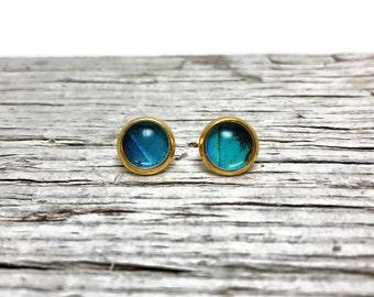 butterfly earrings, unique jewelry, butterfly jewelry, minimalist earrings, butterfly studs, real butterfly wing, insect earrings, gifts
