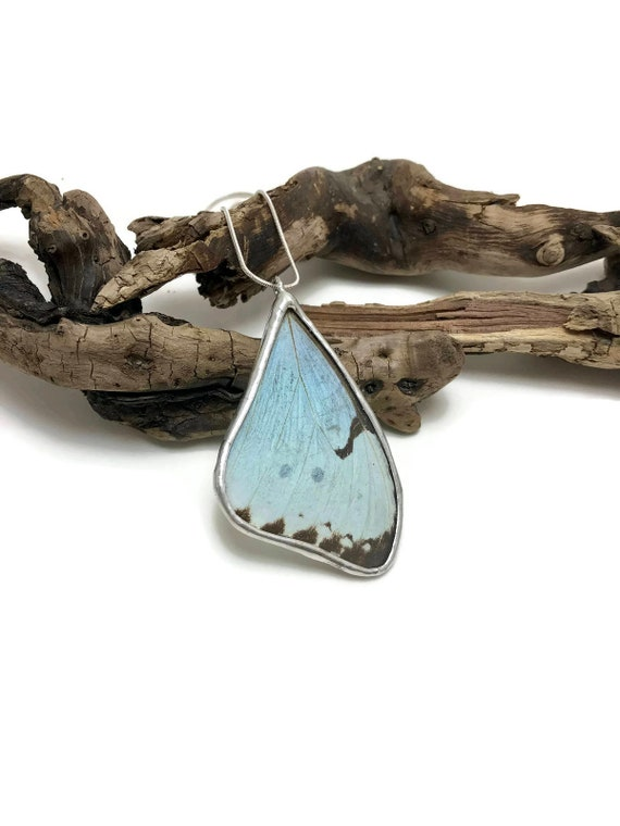 Real Butterfly jewelry, Statement jewelry, real butterfly Wing, butterfly necklace, butterfly Pendant, insect jewelry, insect pendant, gifts