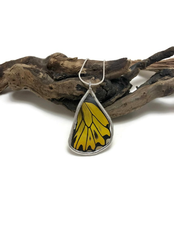 butterfly jewelry, Statement jewelry, real butterfly wing, butterfly necklace, butterfly pendant, unique gifts for her, insect necklace