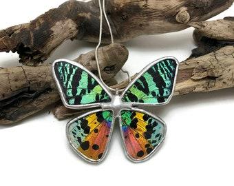 butterfly jewelry, handmade real butterfly pendant, real butterfly jewelry, butterfly necklace, real moth pendant, sunset moth Pendant