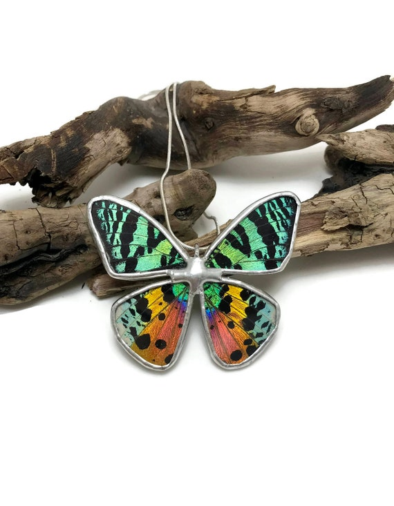 butterfly jewelry, unique jewelry, jewelry for her, real butterfly wing, Statement jewelry, butterfly necklace, insect jewelry, unique gifts