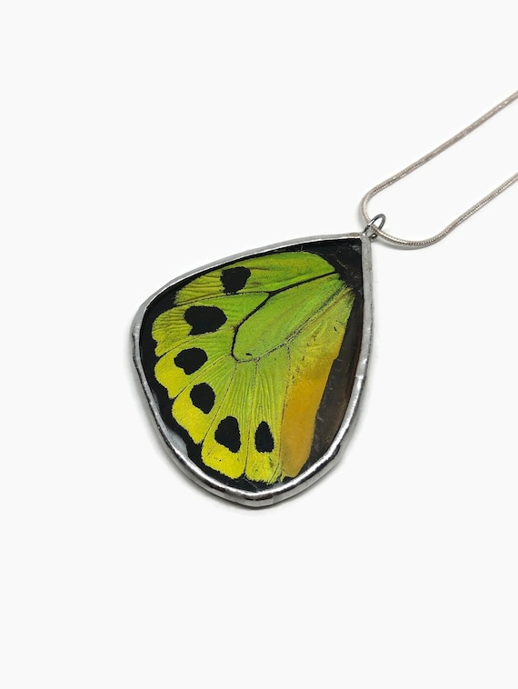 butterfly jewelry, Unique jewelry, unique gifts for her, insect jewelry, statement jewelry, real butterfly wing, Butterfly taxidermy, gifts