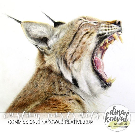 Wildcat Pride - Bobcat colored pencil  print