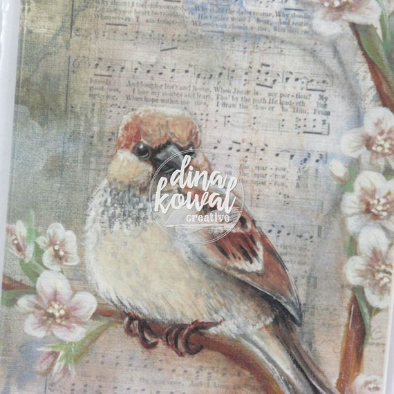 Notecards (set of 3) - His Eye is on the Sparrow