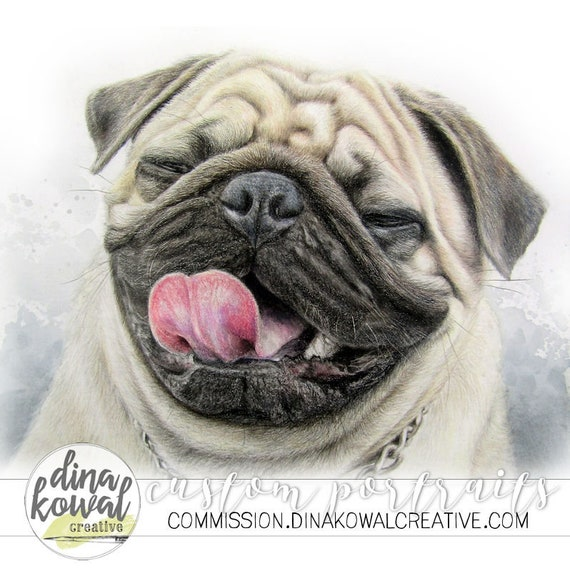 Big Poppy - Pug Dog colored pencil  print
